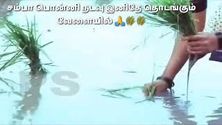 Tamil  status cut songs(86)