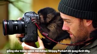 TỔNG HỢP CỰC MẠNH: 6 video đáng sợ và creepy nhất về động vật trong năm 2018