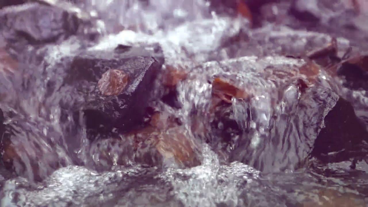 Wasser ermöglicht das Leben auf der Erde