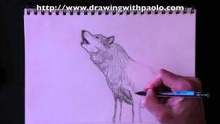 Drawing a wolf with Paolo Morrone