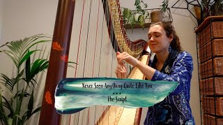 Never Seen Anything Quite Like You - The Script (harp cover)