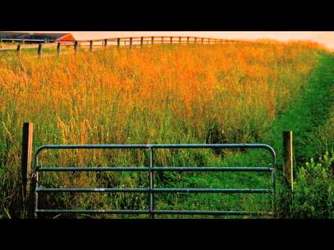 Grazing in the Grass by Hugh Masekela \ Video by Chris Burke