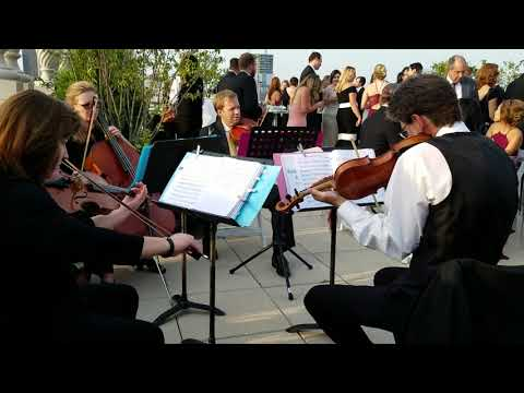 A Whole New World String Quartet