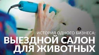 Мобильный салон красоты для животных