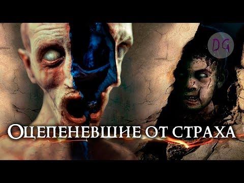 почти [ТРЕШ ОБЗОР] фильма ОЦЕПЕНЕВШИЕ ОТ СТРАХА (Аргентинский ужас)