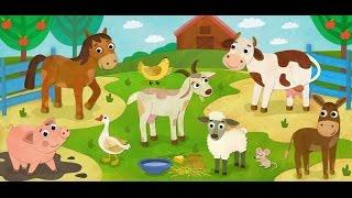 Животные для детей, Найди животных, развивающее видео