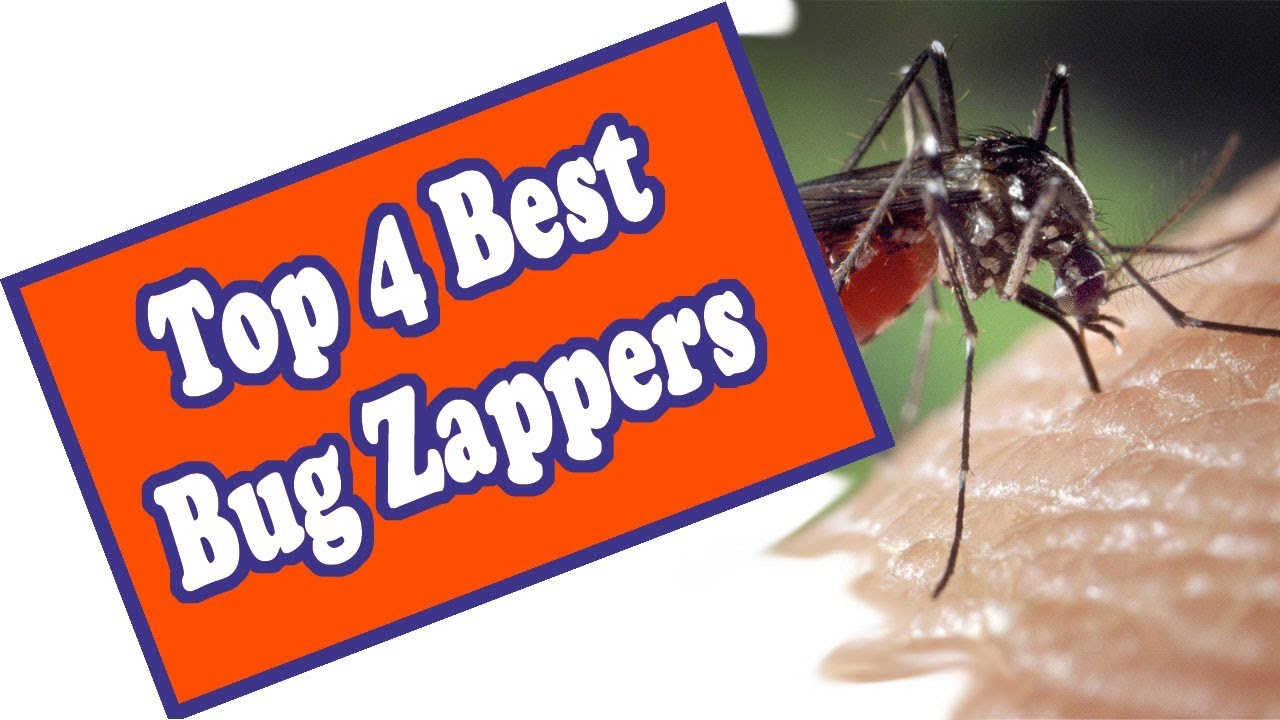 🌻 Here is The Best Outdoor Electric Bug Zapper  Top 4 Fly Light Traps  Reviewed!