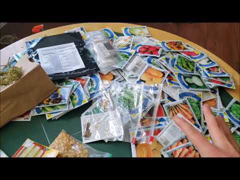 Long term seed storage. Prepper seed bank