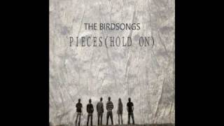 The Birdsongs - Pieces (Hold On)
