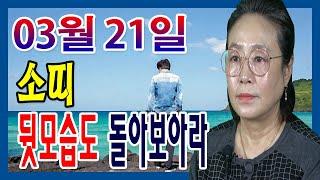 2020년 03월 21일 오늘의 운세 띠별 운세 소띠 앞으로만 달리지 말고 뒷모습도 돌아보아라  수미산당 구…