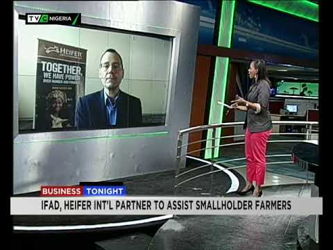 Business Tonight | Bill Foreman speaks on Heifer and IFAD's agreement for small holder farmers