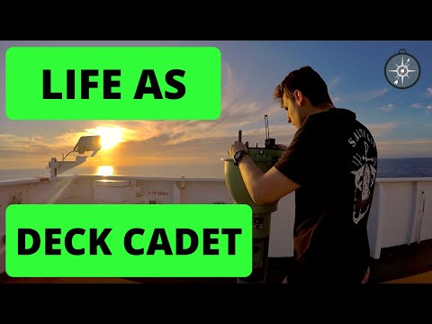 A Day in the life of a Deck Cadet - Plus DOLPHINS PLAYING in the ships bow wave