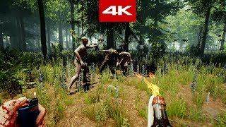 The Forest -4K- GAMEPLAY MAX GRAPHICS PC
