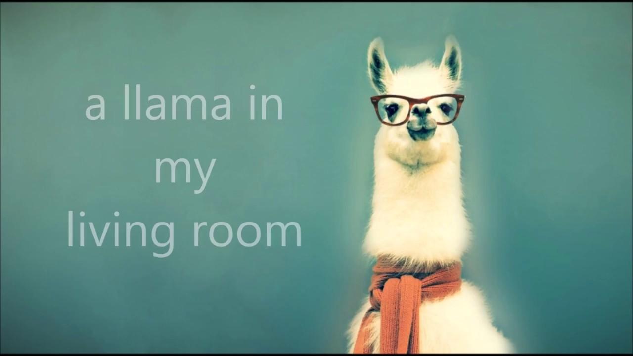 A Llama In My Living Room Lyrics