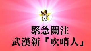 绝望,请关注武汉的两名护士!为什么没有外国医疗队援助中国?