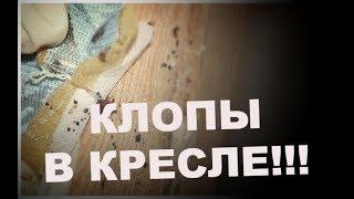видео Уничтожение клопов, тараканов, крыс в Королеве.