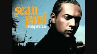 Sean Paul Temperture (With Lyrics)
