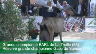 Capr'Inov 2014 - Concours Caprins