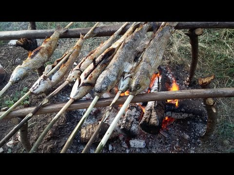 CAMP  Fire - CATCH N COOK FISH - Camping Cooking - Bushcraft