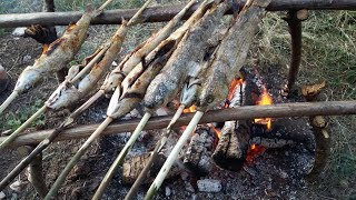 CAMP Fire - CAṪCH n COOK FISH - Camping Cooking - Bushcraft