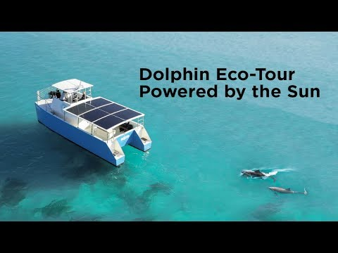 World's first self-built solar powered Dolphin Tour Boat