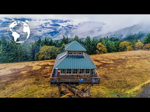 Couple builds Tiny House on Stilts to Experience the Oregon Forest