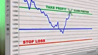 Invest  Forex  Get  35%  Monthly Profit