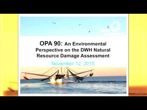 OPA 90 and CLEAN GULF – 25 Years of Stewardship