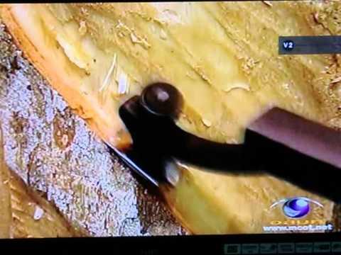 มีดกรีดยาง  นกเงือก  rubber  tapping  knife