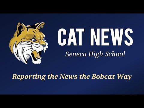 Cat News Broadcast (Friday, October 27)