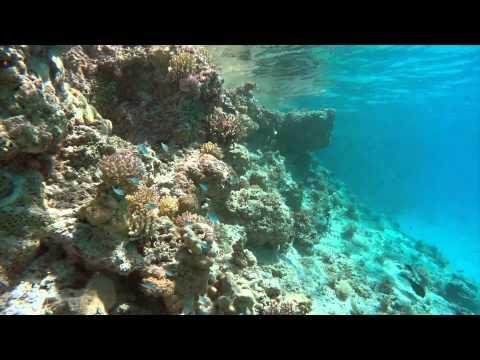 Tokelau Atafu Reefs