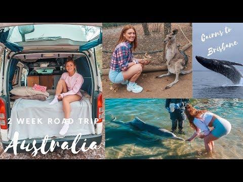 Australia East Coast Road Trip | Cairns To Brisbane