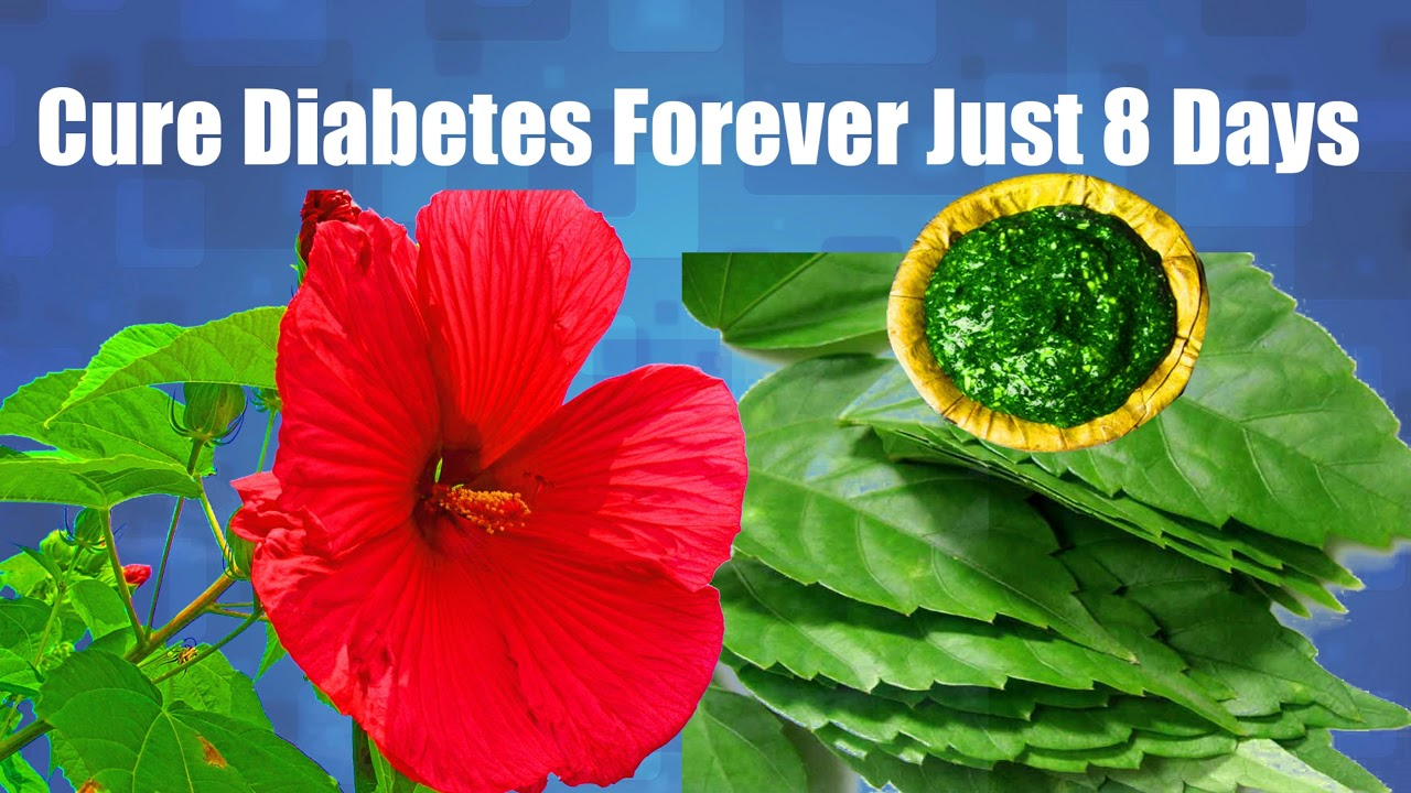 Cure Diabetes Forever Just 8 Days