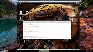 Arch Linux: Xorg 1.6 Fixes & Issues (How To)