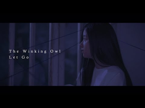 The Winking Owl - Let Go- (Official Music Video)