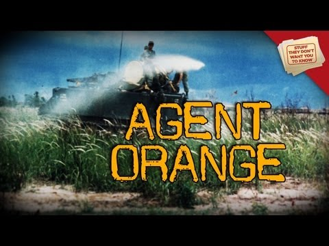 War and Health: Agent Orange