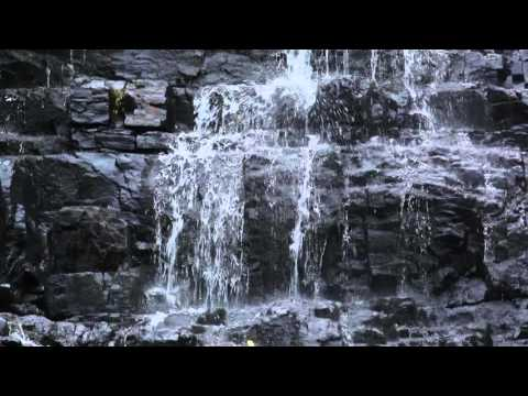 Talakona Waterfalls Tourist Place in Andhra Pradesh