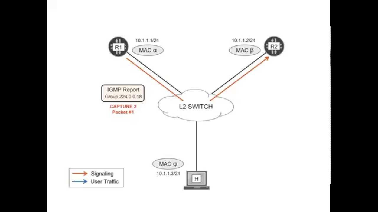 VRRP, the Virtual Router Redundancy Protocol, explained by Juniper Engineers