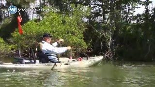 kayak bassin tv catching bass out of trees