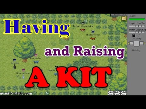 Warrior Cats Untold Tales: How to Have a Kit