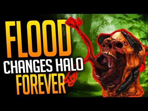 Halo Club - Why the Flood Returning CHANGES Halo Forever!