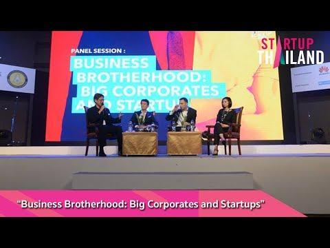 "Panel session: ""Business Brotherhood: Big Corporates and Startups"""
