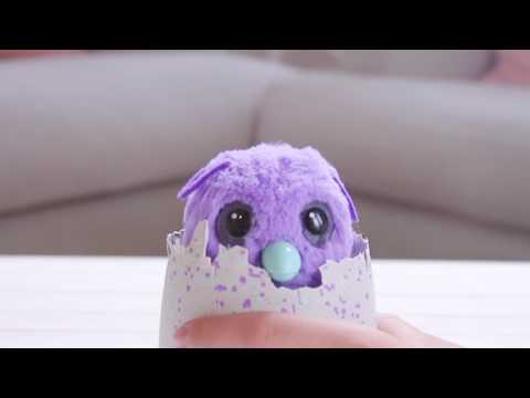 Introducing Hatchimals Burtle – Only at Walmart!
