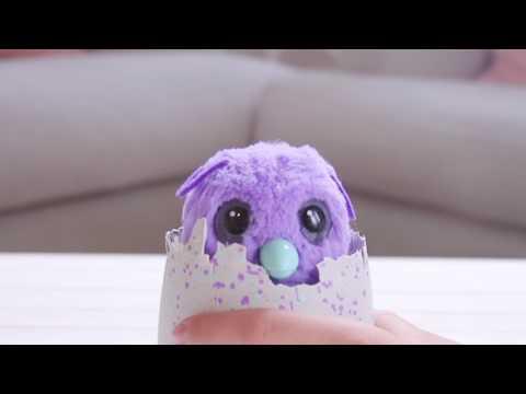 Hatchimals | Introducing Hatchimals Burtle | Only at Walmart!