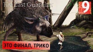 Я не должен плакать ● Last Guardian #9 [PS4Pro] ФИНАЛ