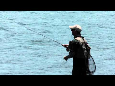 Off The Land OutDoors  Marlborough Dry Fly Trout Fishing