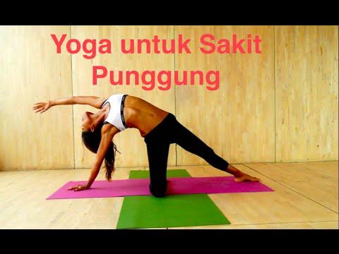 Nyeri punggung bawah (low back pain) adalah rasa nyeri pada pinggang atauNyeri punggung bawah (low b.
