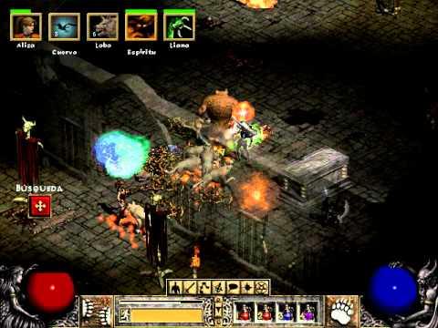 Diablo  Budget Druid Build
