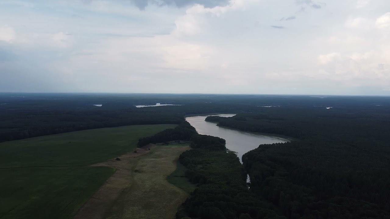 Download Seenlandschaft Kagar + Möwen aus Ahlbeck