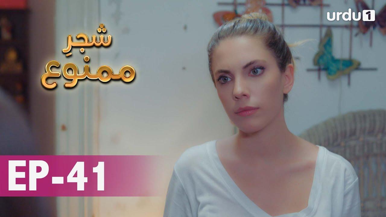Shajar-e-Mamnu | Episode 41 | Turkish Drama  | Forbidden Fruit | Urdu Dubbing | 04 February 2021